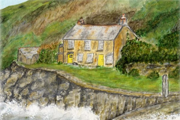 The Frank McNichol Art Group - Delia Tindall