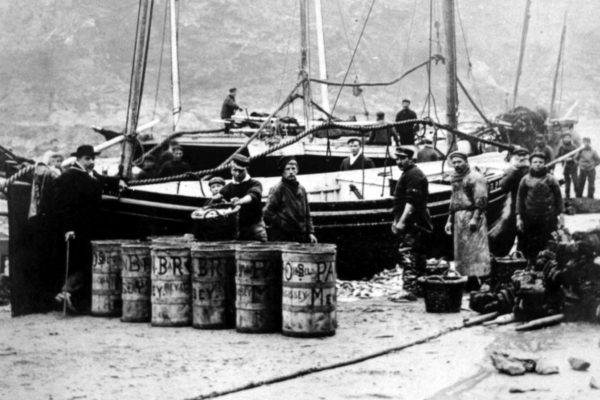 Landing fish from the 'King Edward', c1905