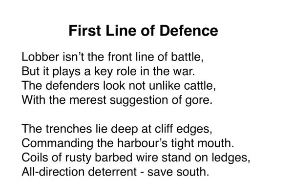 First Line of Defence
