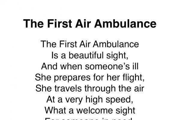 The First Air Ambulance